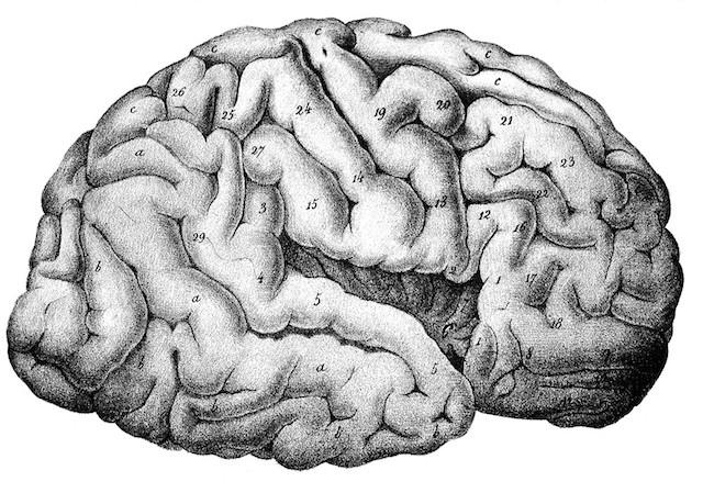 U.K. Perspectives | Schizophrenia