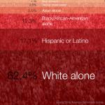 us-race
