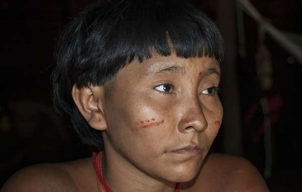 Brazil News | Indigenous Peoples